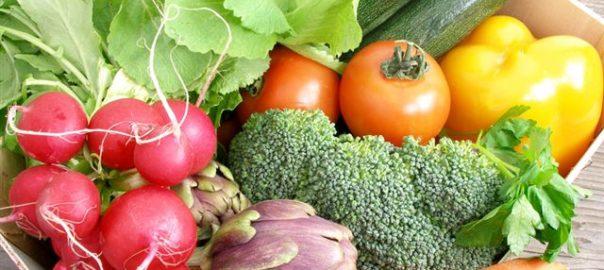 verdure organiche ortoclick